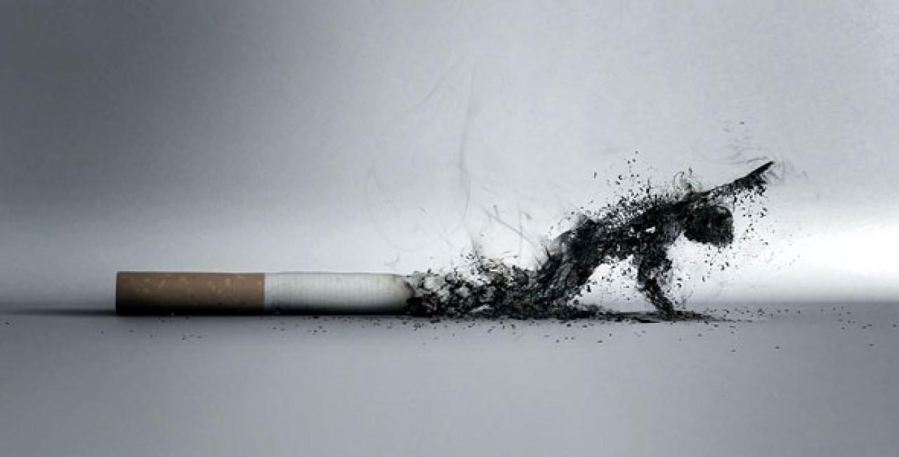 a dohányzás károsíthatja a májat