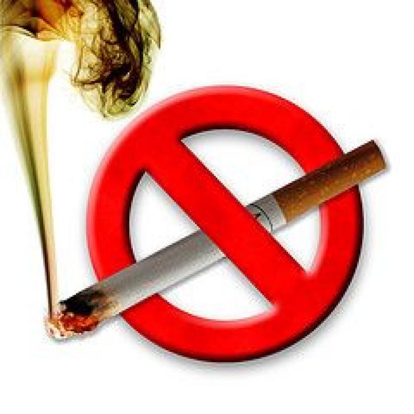 A dohányfüst tönkreteszi a májat és az agyat