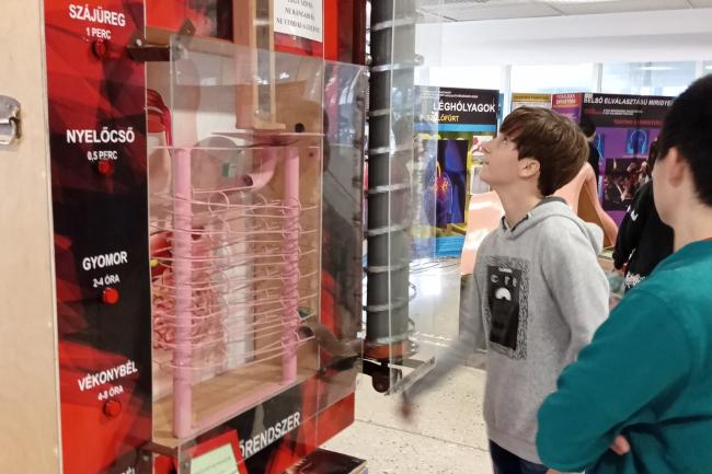 Interaktív kiállításon jártak a kölcseysek a Váci Mihály Kulturális Központban